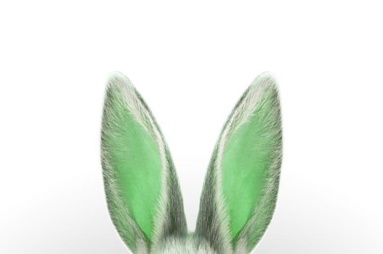 Green Bunny Ears