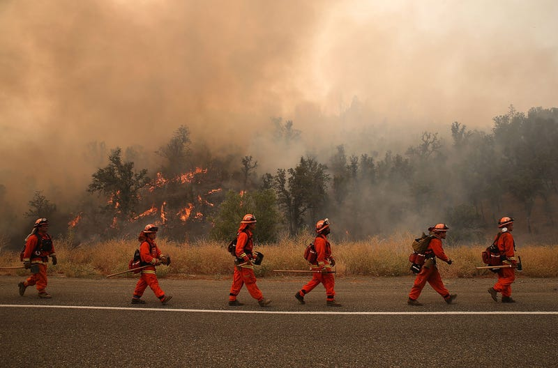 CA bill aims to make it easier for the state's inmate firefighters to become professional firefighters after their release