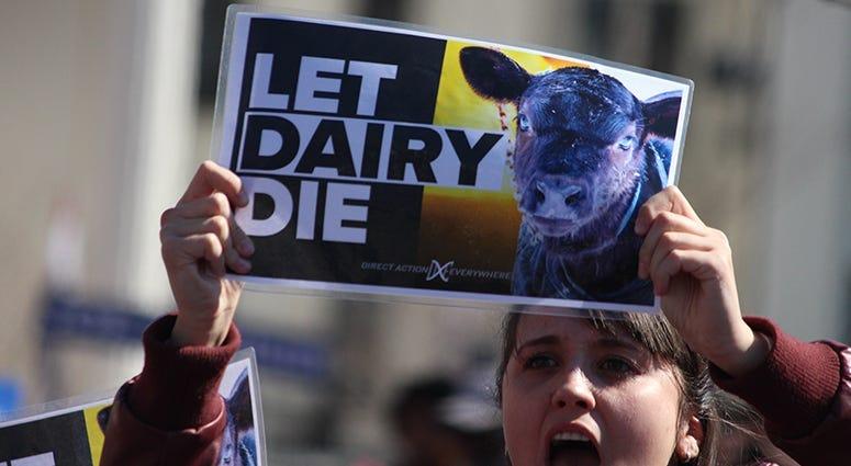 Let Dairy Die Protesters interrupt Joe Biden in St. Louis