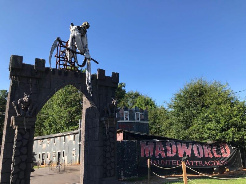 MadWorld Entrance - Emily Gill