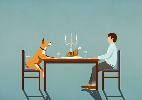 Man, Dog, Bestfriends, Eating, Hilarious, Video, Viral, Smile