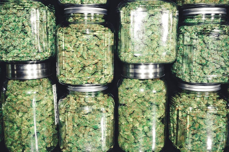 Marijuana in jars