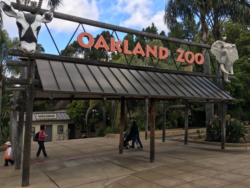 The Oakland Zoo.