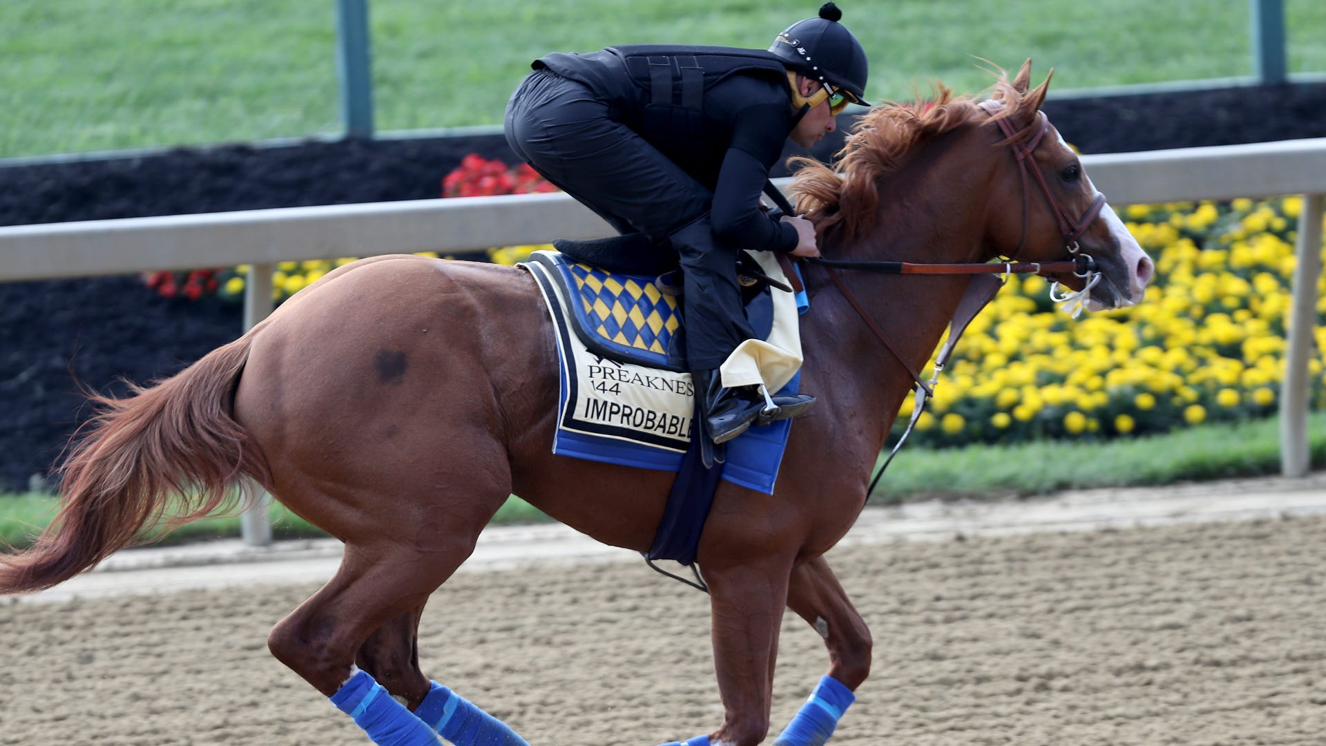 Preakness Stakes 2019: Start Time, Horses, Odds, Betting Guide