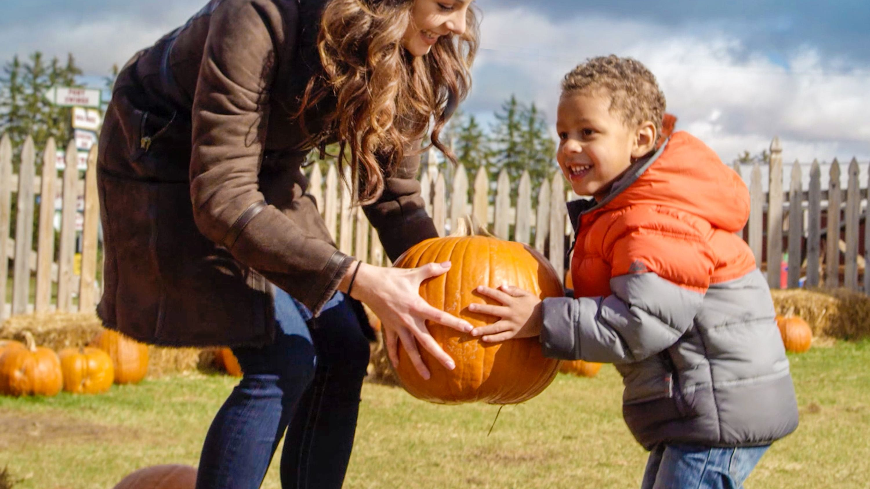 Apples, pumpkins and spooky events: Blake's Orchard & Cider Mill announces fall schedule