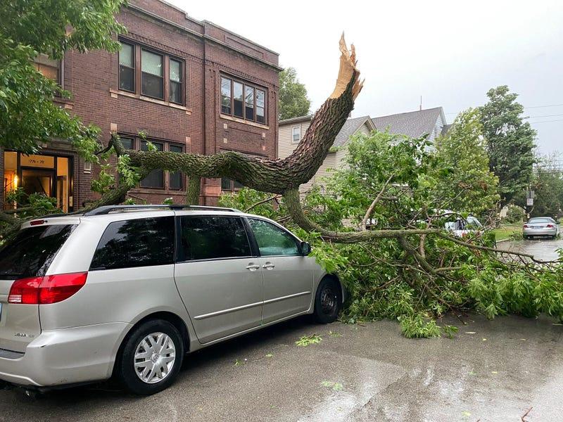 Storm Damage Ravenswood