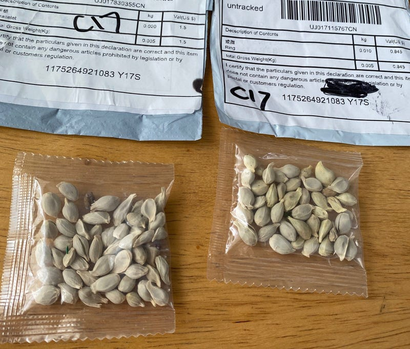 seeds from china