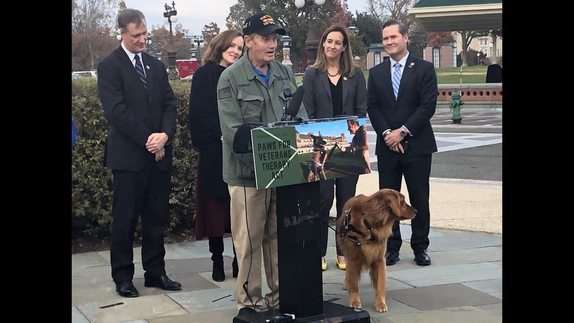 VA doesn't pay for PTSD service dogs for veterans. House passes bill to change that.