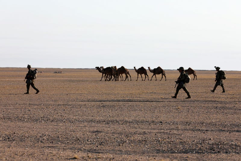 Soldiers move in a squad formation during the final, early morning hours of a tactical mission, as part of the unit's annual Spur Ride.