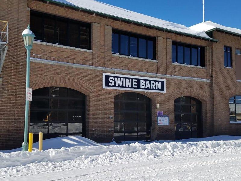 Swine Barn at the State Fair