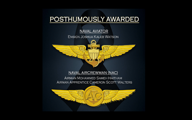 graphic depiction of the Naval Aviator and Naval Aircrewman pins posthumously awarded by Secretary of the Navy, Thomas B. Modly, to the victims of the Naval Air Station Pensacola shooting Dec. 6, 2019.