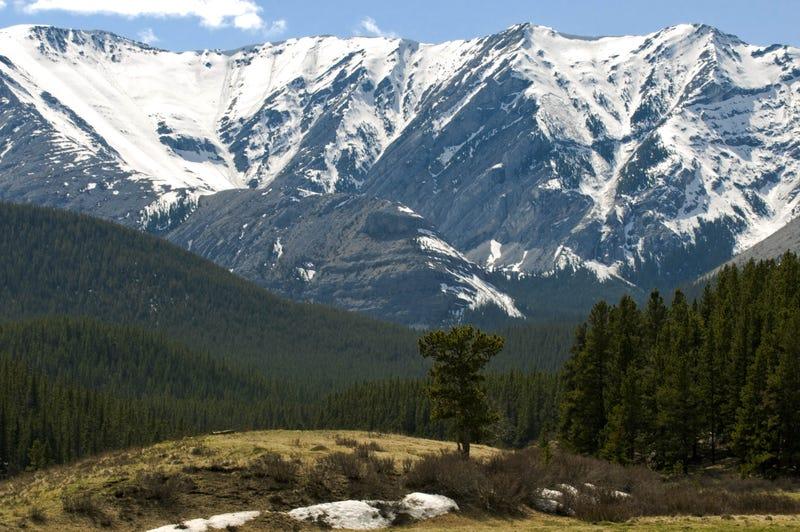 Wildland Glacier in Alaska