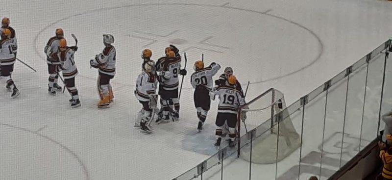 Gophers celebrate win over Michigan State