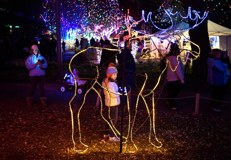 The annual Zoo Lights instillation at the Denver Zoo
