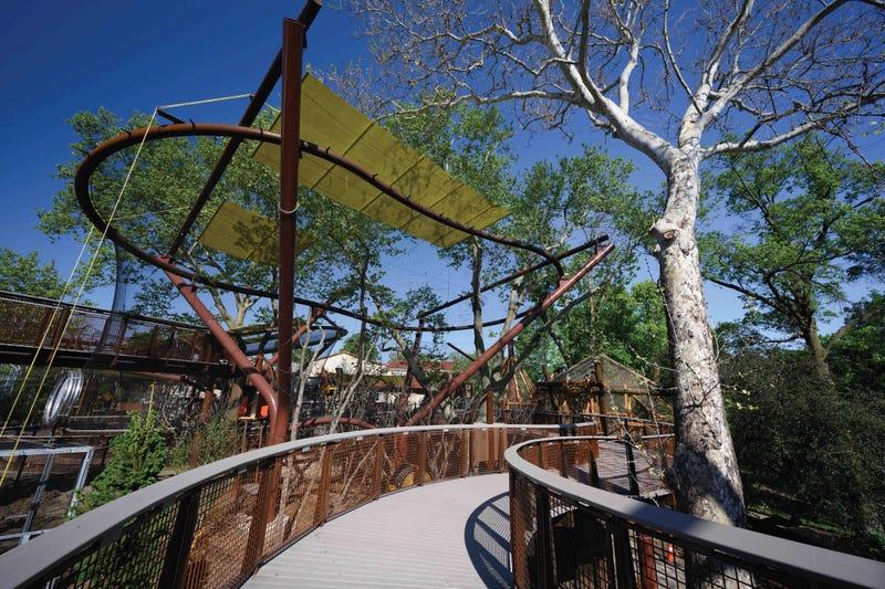 Primate Canopy Trails