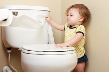 Toddler Flushing the Toilet