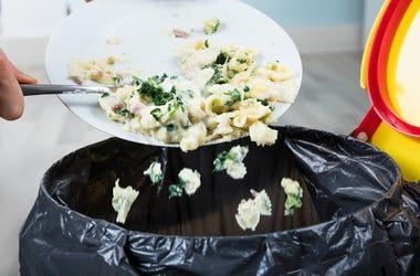 Wasting Food