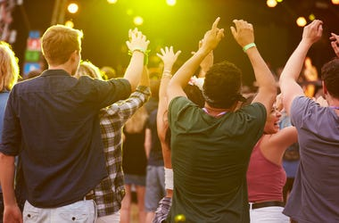 Crowd at concert