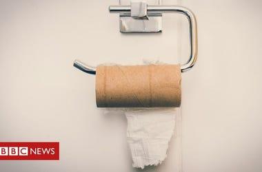 Toilet Paper Poem