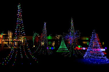 Lewis Ginter Lights