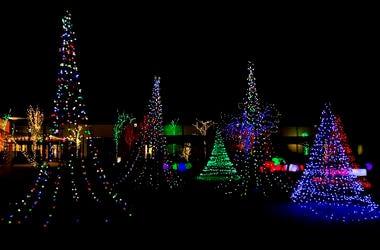 Lewis Ginter Lights