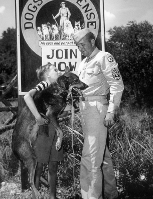Clyde Porter gives his dog, Junior, to the Texas recruiting station for Dogs for Defense, August 1942
