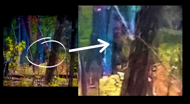 Billy Humphrey's photo of what some believe is Bigfoot