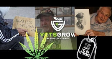 National Alliance to End Homeless Veterans History Project and VetsGrow marijuana documentary