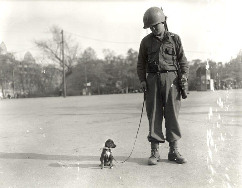 Army Pfc. Raymond Gasiorowski takes Leipzig, his company's pet puppy, for a walk