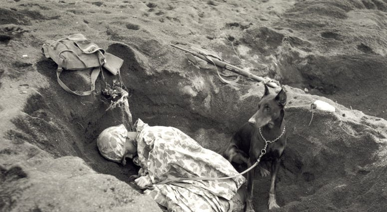 Pfc. Rez P. Hester of the Marine Corps Seventh War Dog Platoon on Iwo Jima takes a nap while Butch stands guard. February 1945.