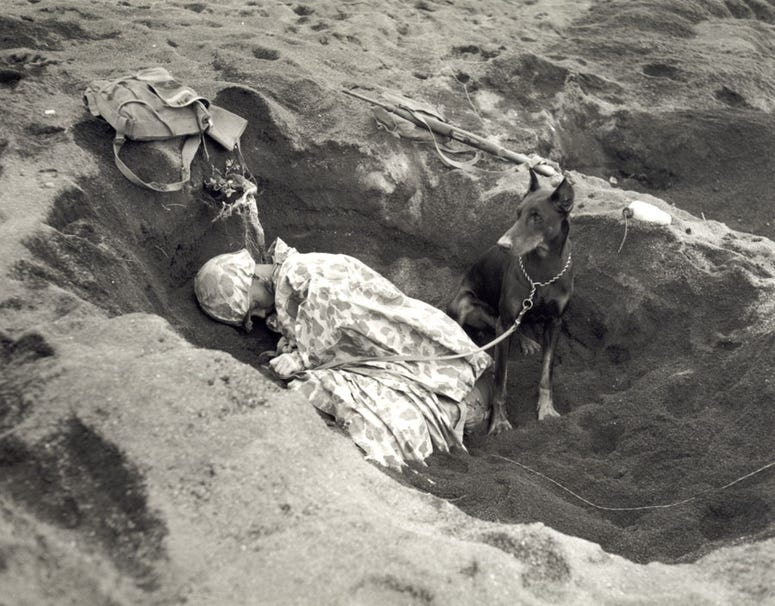 Pfc. Rez P. Hester of the Marine Corps Seventh War Dog Platoon on Iwo Jima takes a nap while Butch stands guard. February 1945