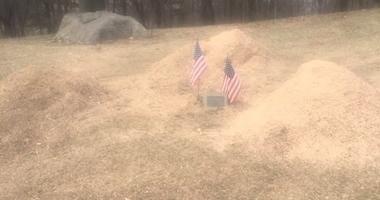Sawdust, American flags