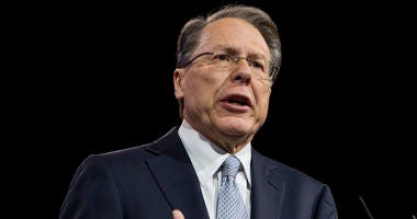 Wayne LaPierre, CEO and Executive of the National Rifle Association (NRA).