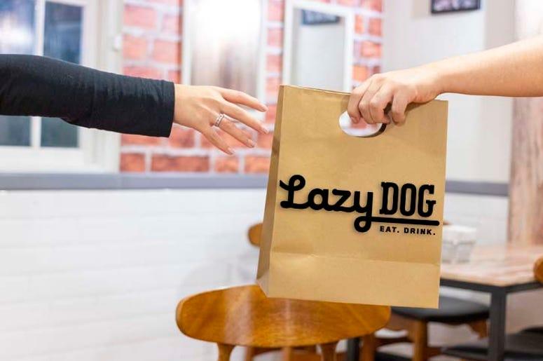 Lazy Dog-4.3.20