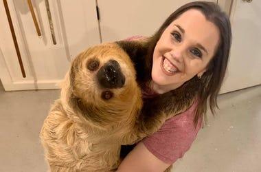michelle sloth