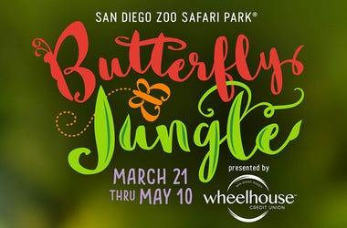 SD Zoo Butterfly Jungle
