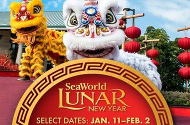 SeaWorld Lunar New Year 2020