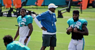 Brian Flores Dolphins