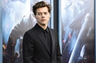 Singer-Actor Harry Styles in 2017