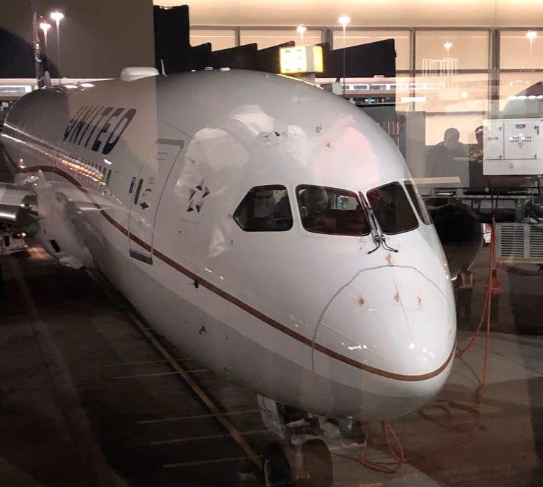 Visible blood on nose of United Airlines 787 Dreamliner