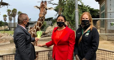 Mayor London Breed stands with a giraffe during her tour of the San Francisco Zoo and Garden.