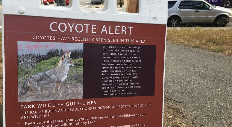 A sign in Golden Gate Park on July 17, 2019 warns that coyotes have recently been seen in the area.