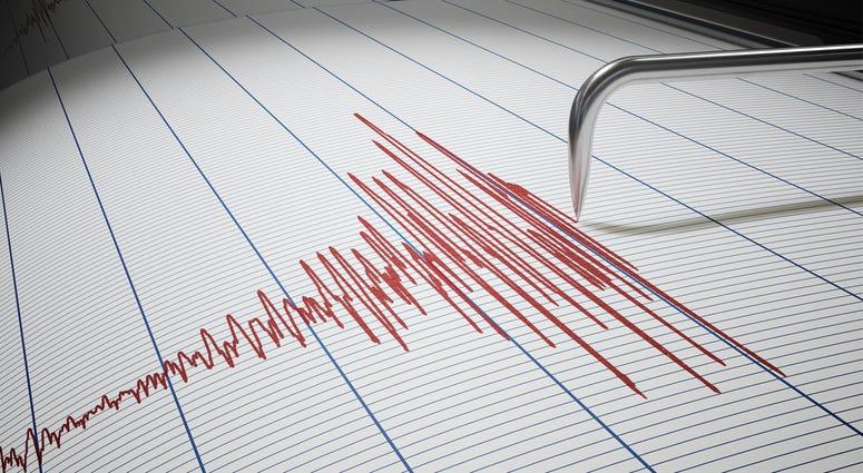 Seismic Earthquake or Lie Detector Test