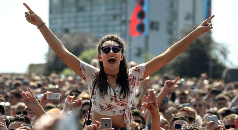 Concert / Music Festival-goer