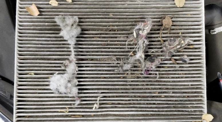 Clogged cabin air filter