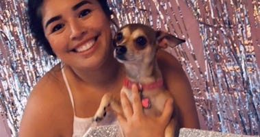 Chihuahua Celebrates Birthday with A Doggy Quinceañera