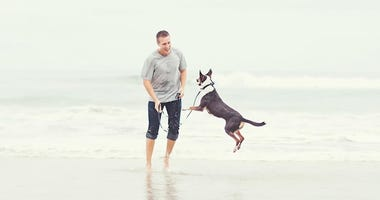 Homeless Blind Dog Goes to Beach for First Time Ever