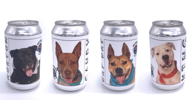Motorworks Brewing cans