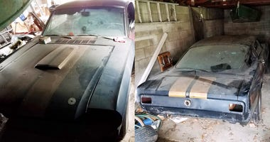Rare 1966 Shelby Gt350h Found Sitting In 'little Old Lady's Garage' Could Be Worth More Than $100K