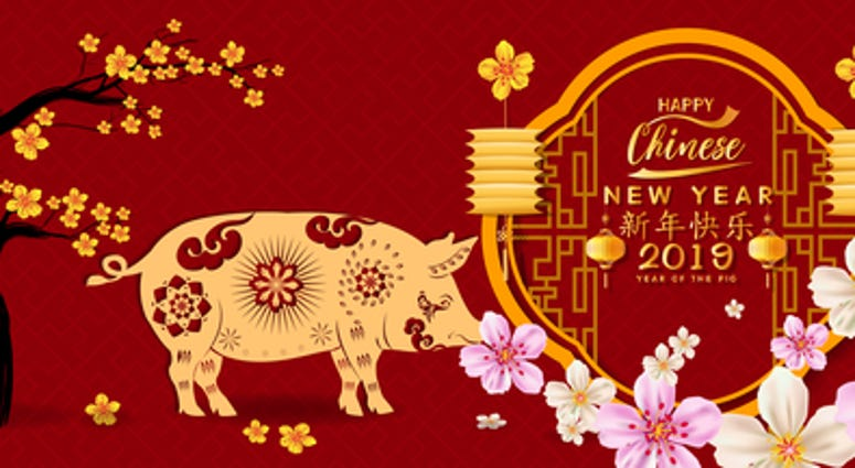 Year of the Pig. Lunar new year. Chinese characters mean Happy New Year.